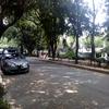 痛快ウキウキ通り by Mexico City