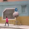 素敵な傘を見つけました @McGregor Street - Wan Chai