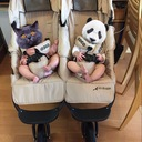 双子パパとしおの育児休業日記