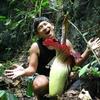【スマトラ旅行】世界一大きな花が見られる「バトゥカタック(Batu Katak)」