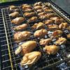 牡蠣の燻製オリーブオイル漬けで美味しいおつまみ