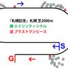 【札幌記念・2019年】好ラップを刻むも地力の差が出たエイシンティンクル|逃げ馬レース結果