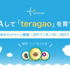 teratail夏休みキャンペーン結果発表!1番大きな「teragao」は何cm?