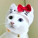 Tigers X Cats