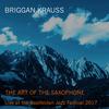 Briggan Krauss / The Art of the Saxophone: Live at the Saalfelden Jazz Festival 2017