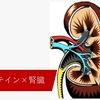 プロテインは腎臓に悪い?腎臓の機能と最新エビデンス -健康に筋トレ・タンパク質摂取するために-