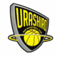 平成29年度 第16回那覇地区ミニバスケットボール春季強化大会決勝戦
