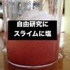 【自由研究】スライムに塩を入れたらこうなった。【画像付き】