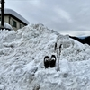 車検の後裏山にスノーハイク