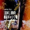 【一泊なんと1,000円!】埼玉の格安キャンプ場でキャンプしよう!(日高巾着田)