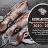 輸入、輸出、生産別の世界のイカ市場予測