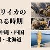 【エギング】アオリイカの釣れる時期|九州沖縄・四国・本州(日本海側・太平洋側)・北海道