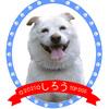 SUZURIショップでステンレスタンブラー新発売☆