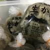 九十九島産牡蠣