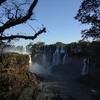地球の裏側への旅―イグアスの滝