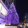 クリスマスがもう来ている〜🎄🎄
