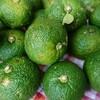 無農薬の青柚子でゆず胡椒作り