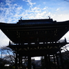 桜の時期にまた訪れたい【正麟寺】城山公園近く
