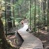 Deep cove to Lynn Canyon