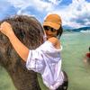 象さんビーチへようこそ!