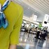 旅行「コタツ、韓国旅行へ行く」