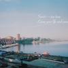 旅をして、心を溶かして。ウラジオストクの夏と、猫の映画「ハリーとトント」