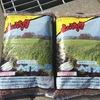エン麦を播種しました