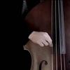 エレキベースを弾く人がアップライトベースをやるべき5つの理由/ 5 Reasons of Why You Should Be Playing Upright Bass