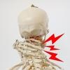 頚椎症性神経根症・首の痛みと腕の痺れの片腕生活で令和2年は始まった