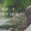ミヤマオウムは「確率」を理解する動物?