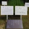 万葉歌碑を訪ねて(その1109)―奈良市春日野町 春日大社神苑萬葉植物園(69)―万葉集 巻三 二五六