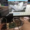 Raspberry Pi上でPython3+rawpyでRAW現像する方法