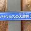 夏休みの福井県立恐竜博物館レポート。その2