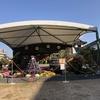 11月8日まで催されていました「広島城大菊花展」