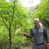 【写真いっぱい】森林ワーク in 山形 開催決定!集え日本のエミシ!5/11(金)~5/13(日)