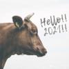 謹賀新年◆2021年の目標|今年はこんな年にしたい!