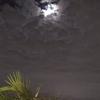 【つれづれ】20171022 一瞬雲間に月が覗き