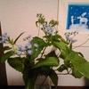 自分のためにお花を飾る