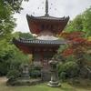 三瀧寺、「多宝塔」歩んできた道、感慨深いです。浅野幸長公から繋がっています。