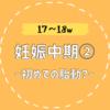 【17〜18w/妊娠中期②】これが胎動か!?お腹の張りが気になる