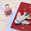 初の赤ちゃん連れ飛行機!日本⇔タイ間フライトの注意点とサービスまとめ