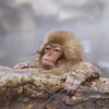 天然温泉 湯楽部|モンゴル式サウナがおすすめの日帰り温泉施設:群馬県太田市