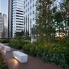西新宿の空中庭園(昼下りPart12)