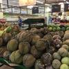 【セブ旅】見飽きぬ景色を求めて セブ島のSM Cityのスーパーに行ってみた!