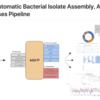 単離バクテリアゲノムのアセンブリ、アノテーション、比較ゲノム解析を行う高度に自動化されたパイプライン ASA3P