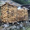 薪のカビ問題と対策【その2】