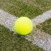 テニスと家庭問題