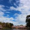 4月7日 大宮公園で写真撮ってきたよ~♪