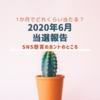 【SNS懸賞】1か月で20件当選!SNS懸賞のコツと使っているモニターサイト【2020年6月当選報告】
