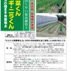 サカナカの種まき 育苗培土「野菜くん ネギ・ニラくん」